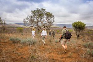 People walking in the bush